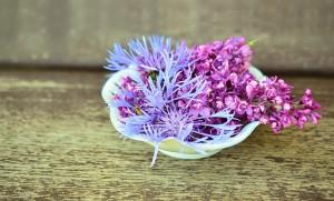 flowers-765757_640