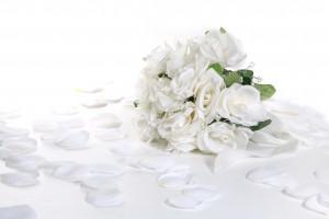 022_flower_4368x2912n