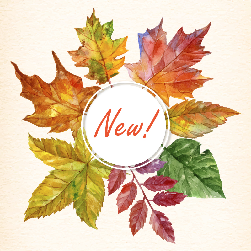 newnovember